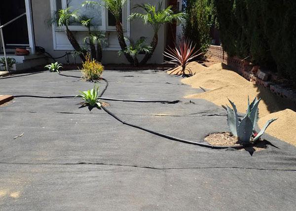Df landscape gallery drought tolerant landscaping for Landscaping rocks orange county